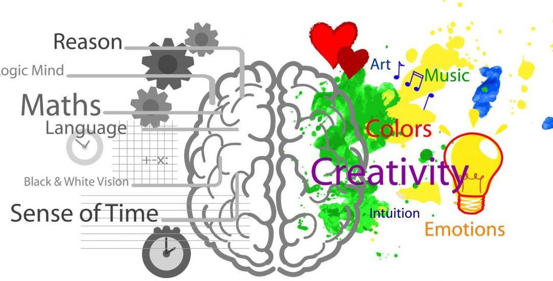 ¿Sabes qué es la plasticidad cerebral? Te mostramos aquí sus beneficios